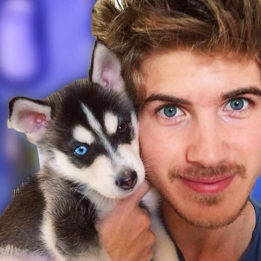 joey graceffa and wolf Joey Graceffa