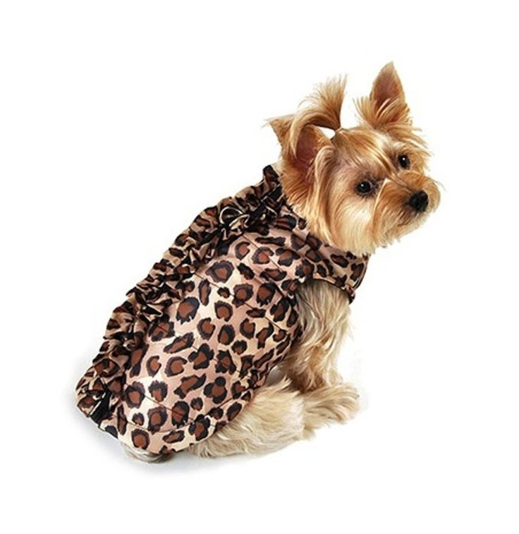Cute leopard clothing for dogs.