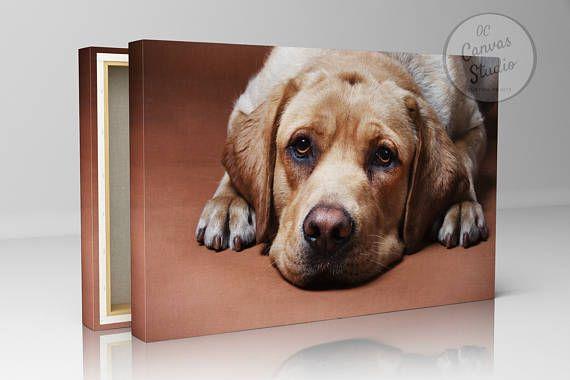 Dog photo frame canvas print photo pet photo frame loved