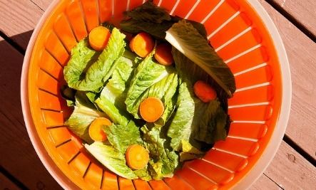 Love it! How to Dry Lettuce Without a Salad Spinner