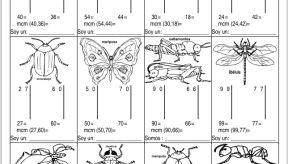 Mínimo Común Múltiplo con insectos