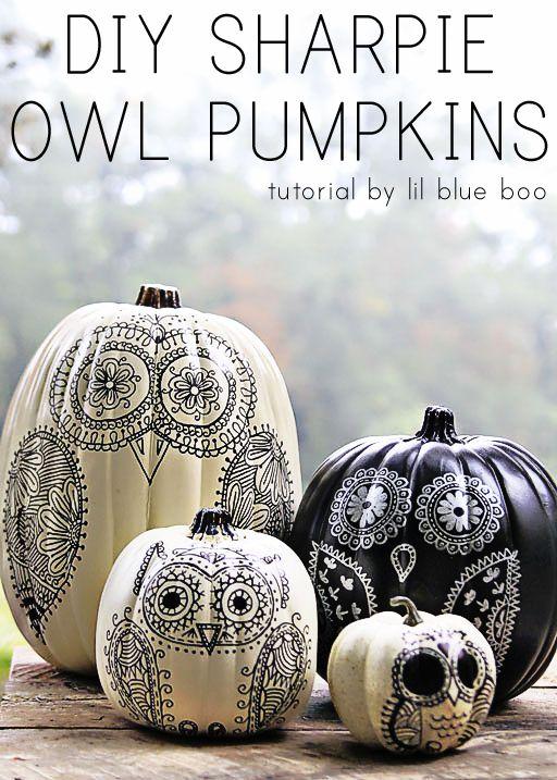 DIY Sharpie Owl Pumpkins Tutorial by lil blue boo