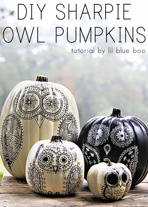 DIY Sharpie Owl Pumpkins Tutorial by lil blue boo
