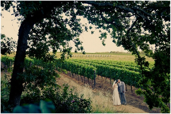 Wedding at Simons Groot Constantia