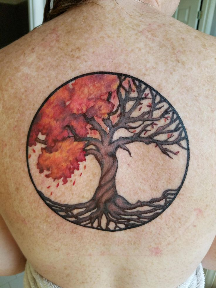 Celtic Autumn Tree of Life by Erika ABT in McDonough GA