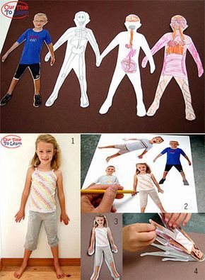 Create a personalized anatomy flip book - go the Our Time to Learn blog for this and other human body activity ideas. Preschool, kindergarten, home school, first grade.