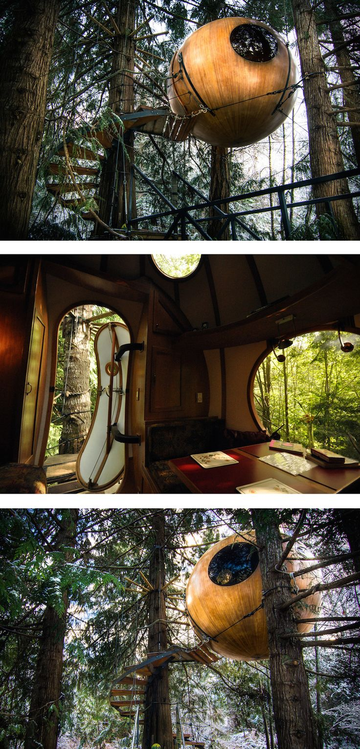 Tucked into the forest canopy of Vancouver Island, Free Spirit Spheres hover 10 to 14 feet off the ground.