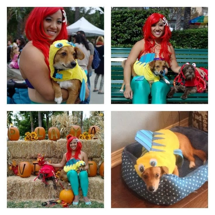 Ariel And Flounder Halloween Costumes