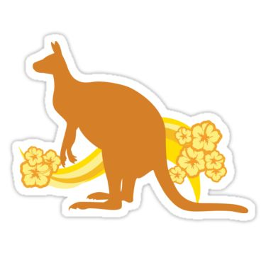Orange kangaroo illustration with cheery bright yellow flowers. • Also buy this artwork on stickers, apparel, phone cases, and more.
