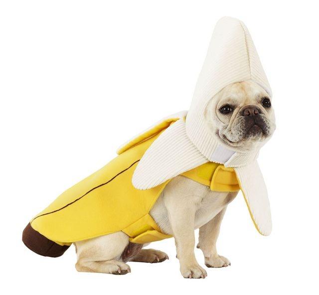 Dog Banana Costume Canada