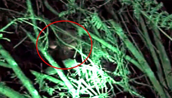 Esta información nos llega desde RCN y el sitio web Colombia.com.        Un equipo de expertos paranormales se han dirigido a la Peña de...