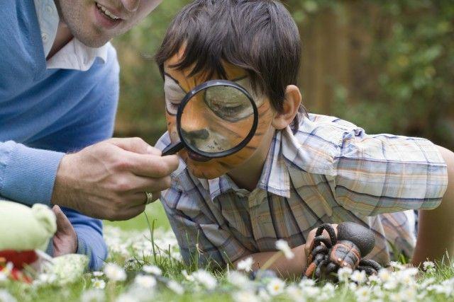 17 migliori idee su Giardino Per Bambini su Pinterest ...
