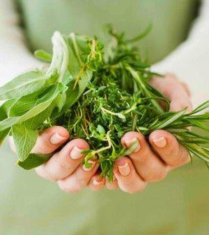 Reumatismi, artrite e dolori da freddo: 5 piante per curarli