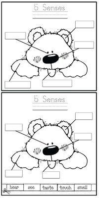 brown bear 39 s 5 senses activity write workshop senses activities senses preschool 5 senses. Black Bedroom Furniture Sets. Home Design Ideas