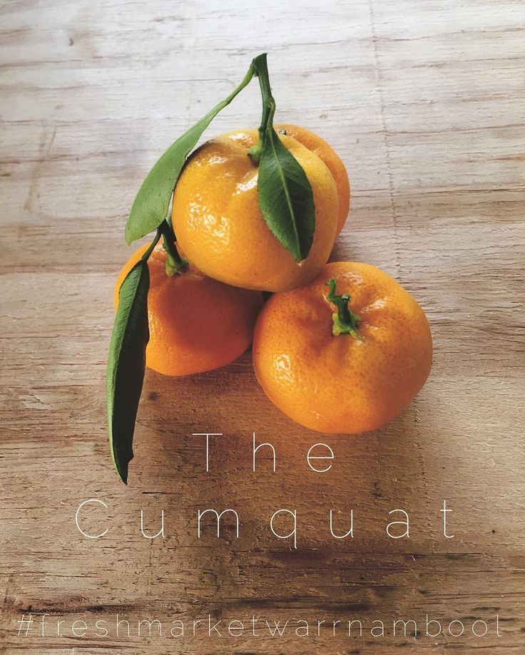 This weekend I was introduced to the small and very delicious organic Cumquat grown by Nappa Merri. How is it that I have never had one of these before?? I want to know what you all like to do with your cumquats... I will say I may be addicted  Tan #freshmarketwarrnambool #warrnamboolmarket #lakepertobe #warrnambool by freshmarketwarrnambool