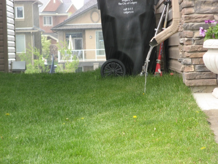Wet weekend ahead- how to keep water out of your basement