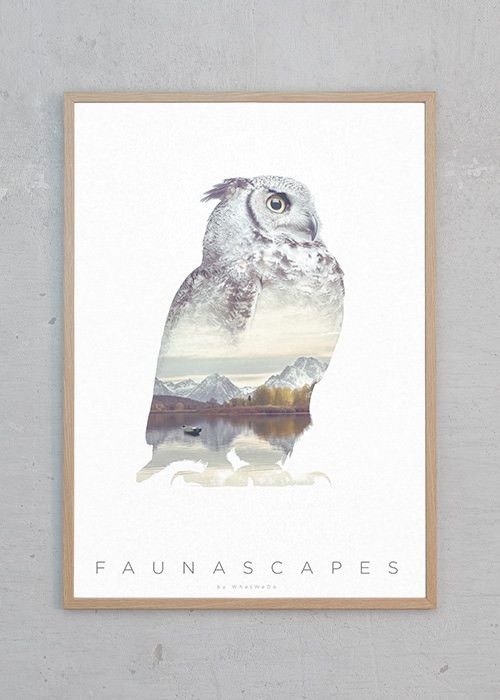 Faunascapes: Uglen | Just Spotted