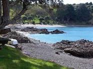 Kawau Island New Zealand - beautiful scenery, beautiful beaches