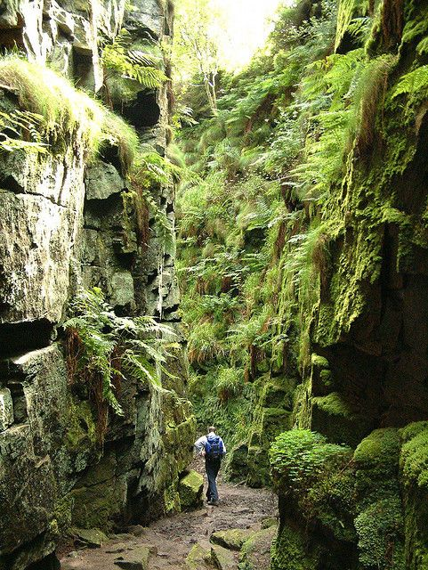 Hiking in Lud's Church, a deep chasm in Staffordshire, England. Robin Hood, Friar Tuck and Bonny Prince Charlie are all reputed to have hidden from the authorities within the chasm.