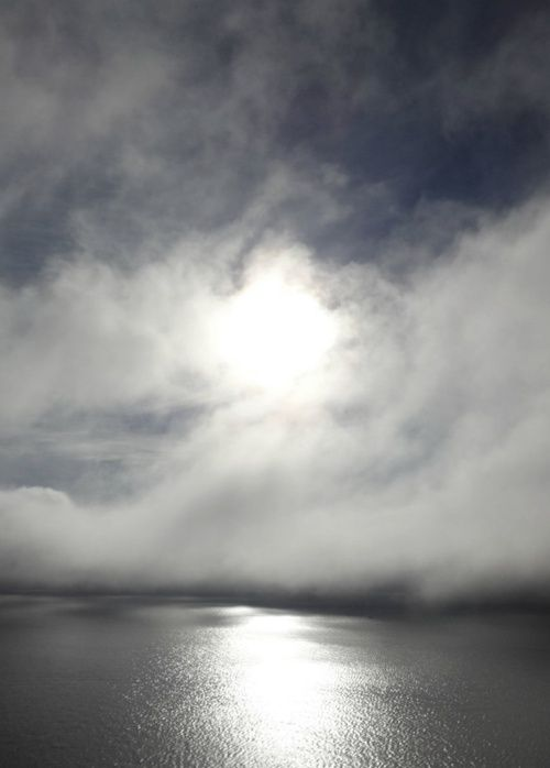 Give me grey. Give me the soft edge of the cloud. Let me slip slowly into the water's embrace and float through lost time. Let the fog descend, I am not afraid. This is my home, this grey ~unknown
