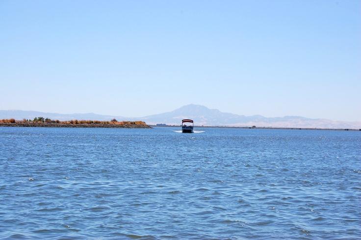 2012 Stockton Summer Bucket List: Cruise the Delta! #Stocktonsummer: Summer Bucket Lists, Stocktonsummer, Cruise