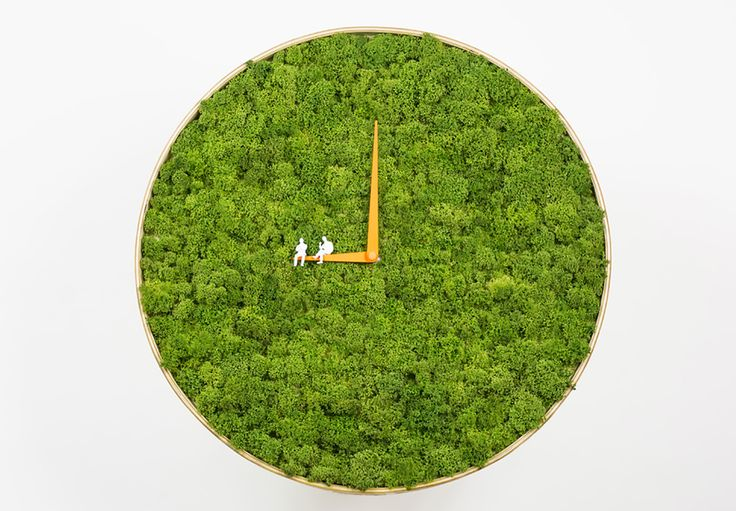 Living Moss Clock brings alpine tundra greenery into the home