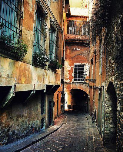 Via Costa dei Magnoli, view from apartment Magnolia.
