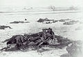 Wounded Knee Massacre - Wikipedia, the free encyclopedia