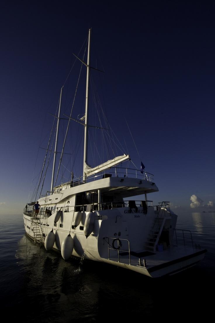 M s de 25 ideas incre bles sobre las maldivas en pinterest for Conrad maldives precios