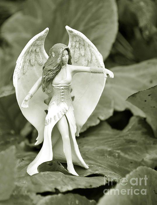 Dancing elf on garden leaves.. #elf #wings #fairy