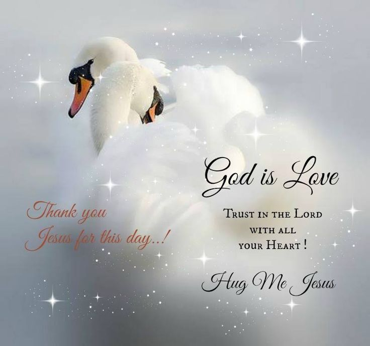 17 Best Images About # THE LORD'S WORD # On Pinterest