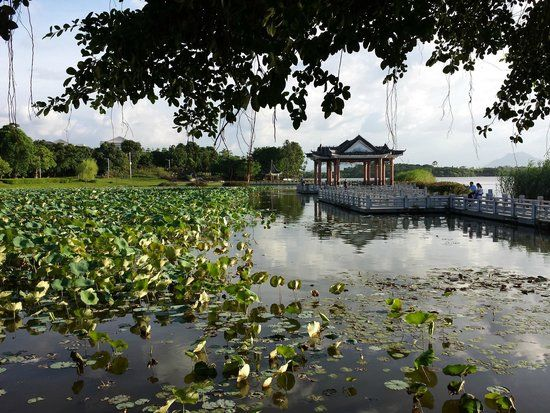 Top Dongguan Parks & Nature Attractions: See reviews and photos of parks…