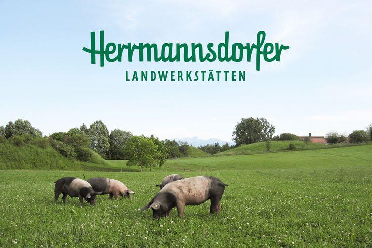 HERRMANNSDORFER / Erscheinungsbild / #bio #lebensmittel #ökologisch #landwerkstatt / by Zeichen & Wunder, München