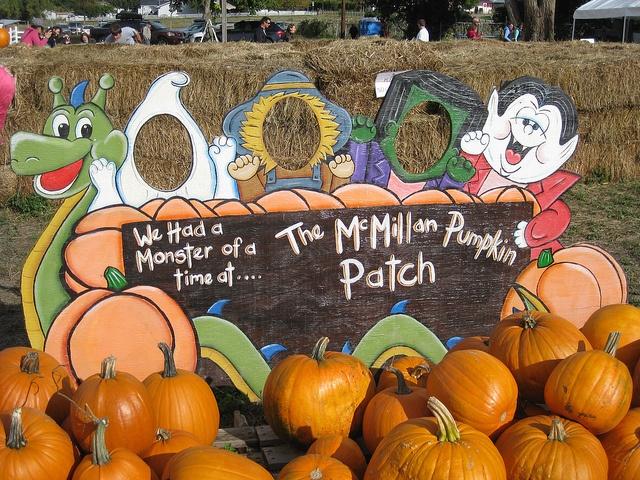 Kelowna pumpkin patch