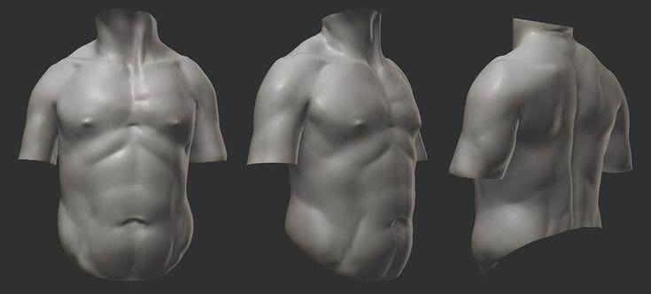 Anatomy study https://www.youtube.com/watch?v=XkzxvtZeC2o