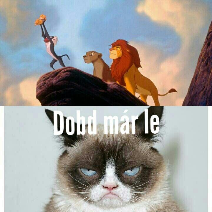 Grumpy Cat Magyar Saját Mémek