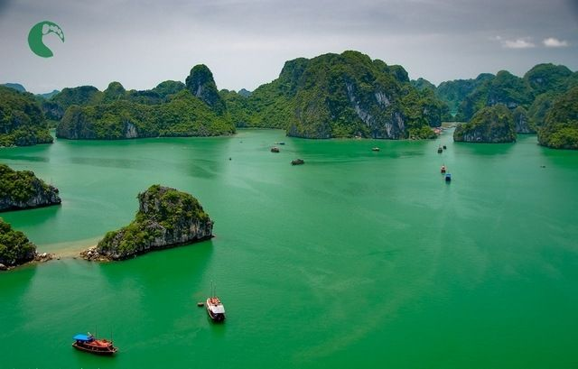 Vietnam boasts beautiful coastlines, stunning mountains, impressive cities and flawless national parks, all of which provide visitors with plenty to see and do.
