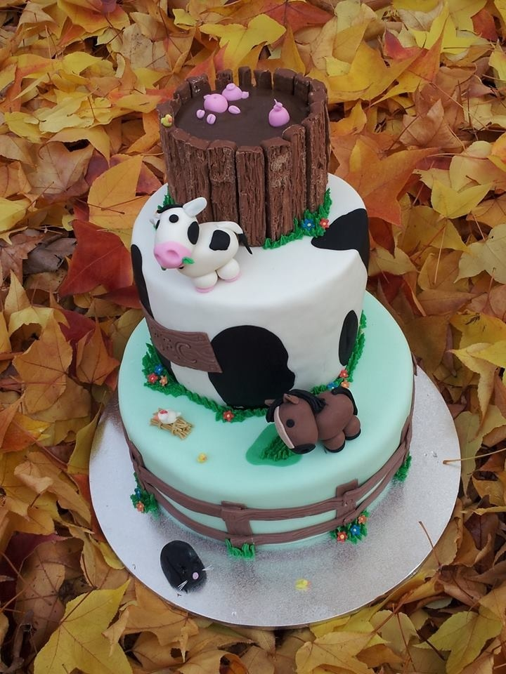Barnyard Cake Ideas