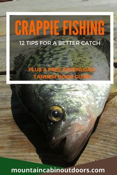 Crappie Fishing-12 Tips for a Better Catch PLUS download a free printable guide to snelling a tandem hook   Mountain Cabin Outdoors   http://mountaincabinoutdoors.com/crappie-fishing-12-tips/