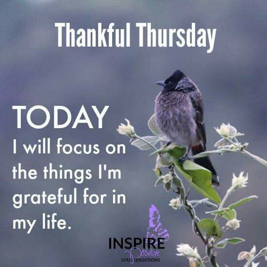 Thankful Quotes Inspirational: Best 25+ Thursday Greetings Ideas On Pinterest
