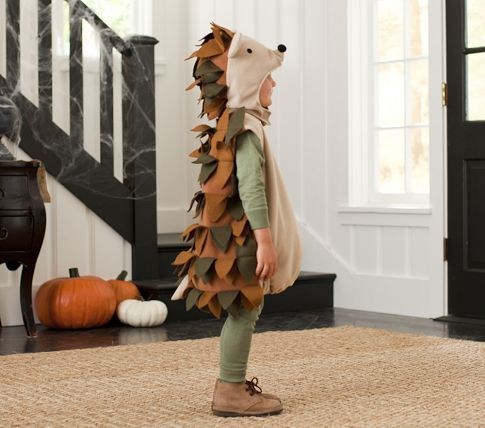 Hedgehog Costume | Pottery Barn Kids.  @Jennifer Page, we need to make this for next year!