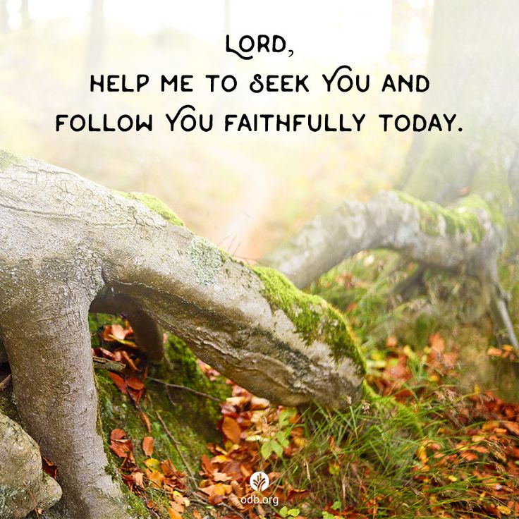 Thank You for Your kindness to me, Lord. Help me to seek You and follow You faithfully today.  God knows us completely . . . and loves us just as much.