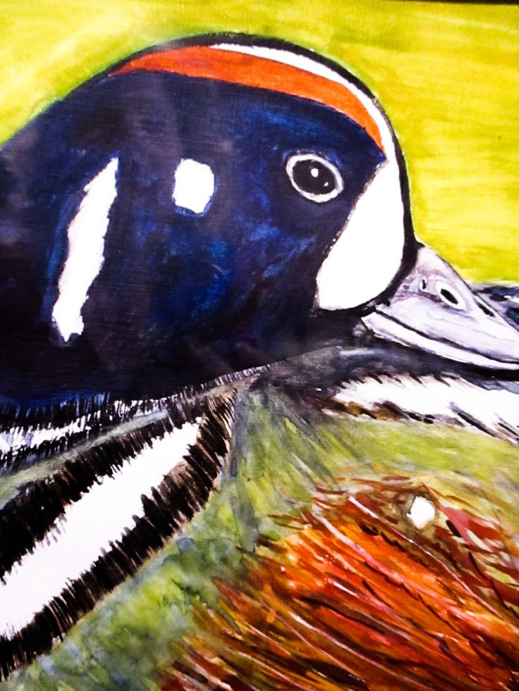 Original Watercolor-  Duck Painting by Artist Robin Booker, 9x12 inch, Unframed by BluberryHillBoutique on Etsy