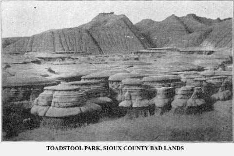 Toadstool Park in 1905. Toadstool Geologic Park is located in the Oglala National Grassland in far northwestern Nebraska. It is operated by the United States Forest Service. It contains a badlands landscape and a reconstructed sod house. The park is named after its unusual rock formations, many of which resemble toadstools.