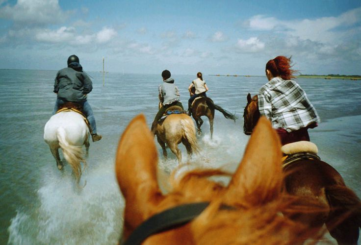 : Buckets Lists, Hors And Rider, Beautiful Hors, Hors Beaches, Beaches Hors Riding, Hors 3, Horses Racing, Riding Horses, Hors At The Beaches