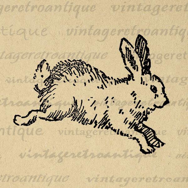 Cute Bunny Printable Image Digital Rabbit Illustration Download Printable Bunny Graphic Vintage Clip Art Bunny Jpg Png Eps HQ 300dpi No.2382 @ vintageretroantique.com #DigitalArt #Printable #Art #VintageRetroAntique #Digital #Clipart #Download #Vintage #Antique #Image #Illustration