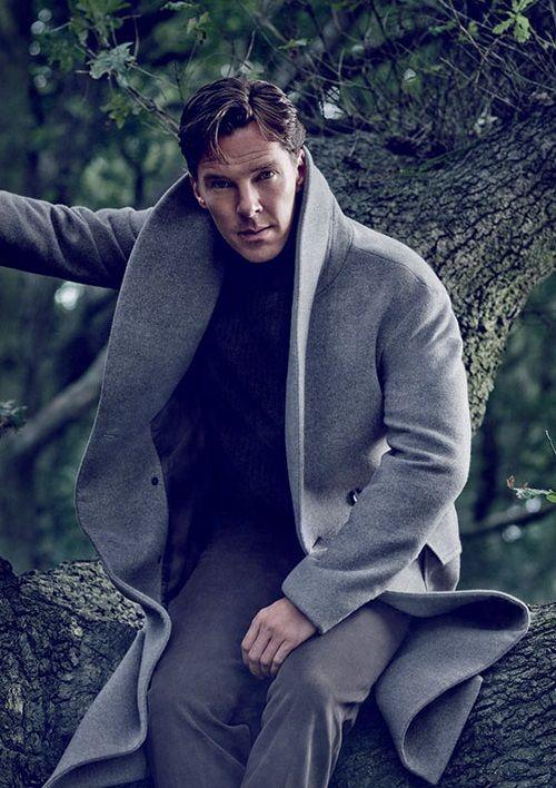 Benedict Handsome Bastard Stuck In A Tree Cumberbatch