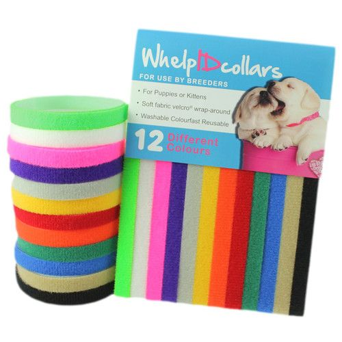 12 Whelping Puppy/Kitten ID Velcro Collars Bands - Soft, Adjustable  Resusable | eBay