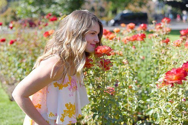 🌹Stopping to smell the roses on this gorgeous 1st day of September 🌹 #crispmornig #almostfall #rosegarden