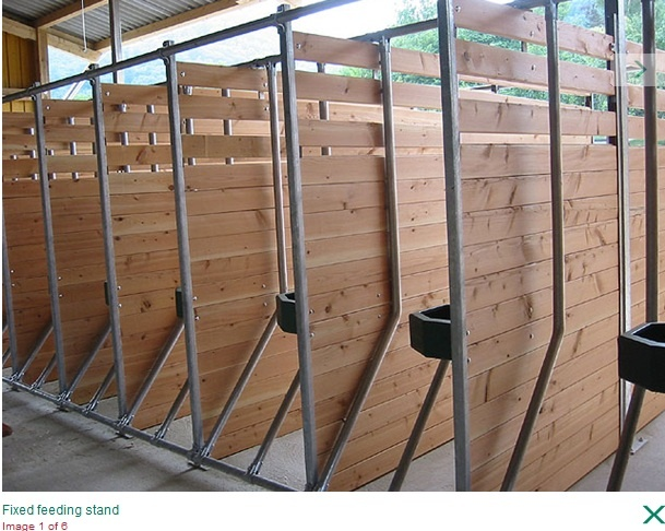 1000 ideas about stalls on pinterest horse stalls for Spiral shower stall